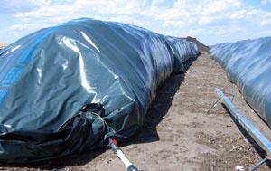 enviromental_composting (1)